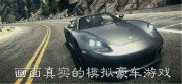 画面真实的模拟豪车游戏