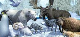 操控动物生存的游戏合集