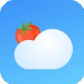 番茄天气预报v2.0.0